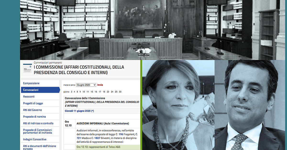 Chamber of Deputies. Hearing of Telos A&S on the regulation of interest representation